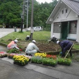 7月2日 花壇の花植えを行いました。